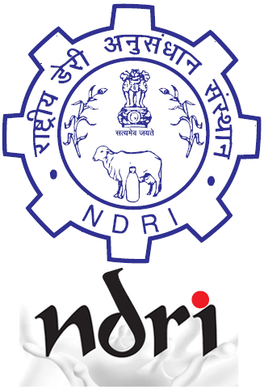 NDRI Recruitment 2021