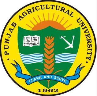 Punjab Agricultural University Recruitment 2021